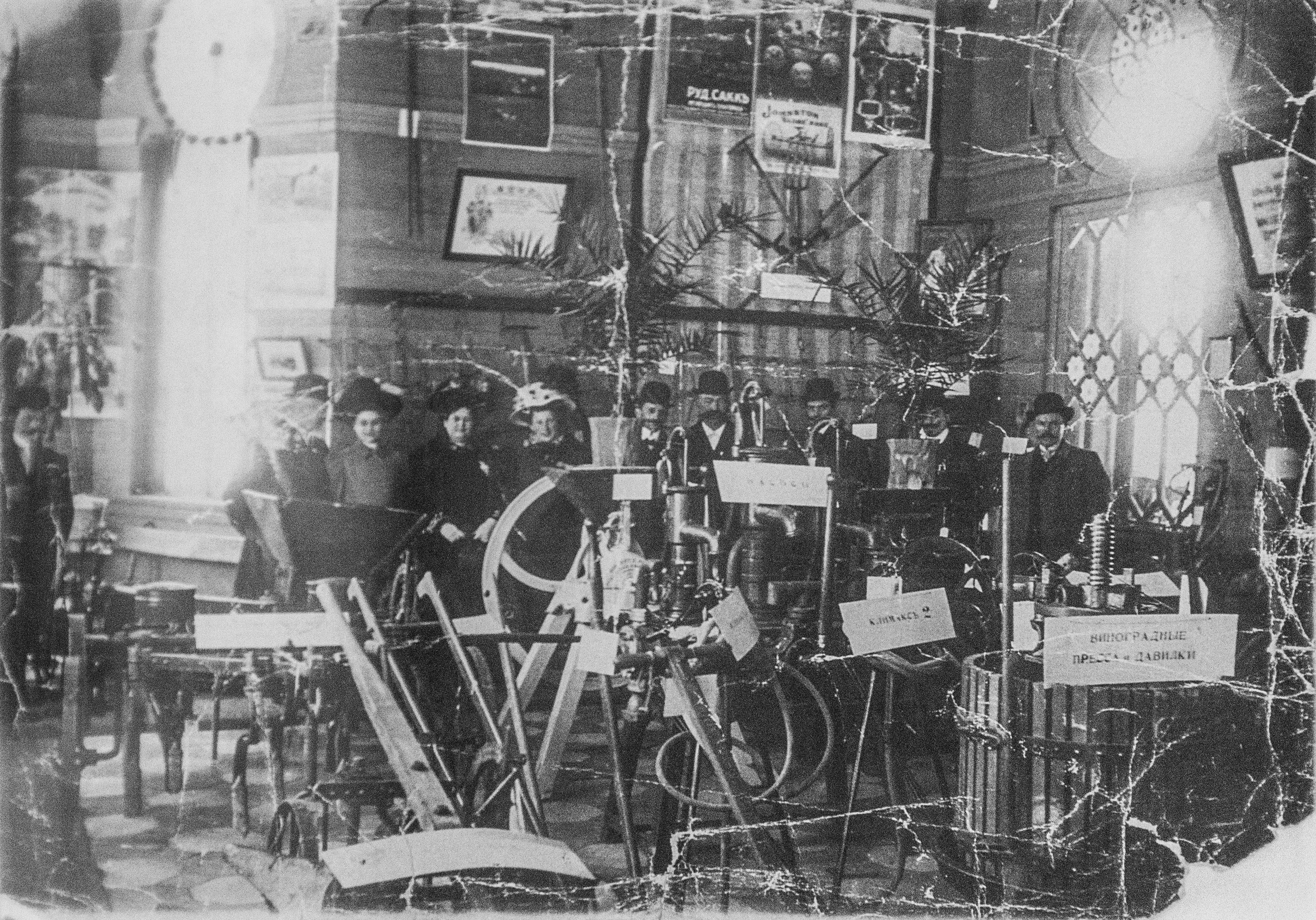 Экспозиция т-ва Гельферих-Саде на IV выставке садоводства. 1909
