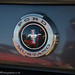Ford Mustang boot badge