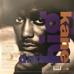 BIG DADDY KANE:IT'S HARD BEING THE KANE(JACKET B)