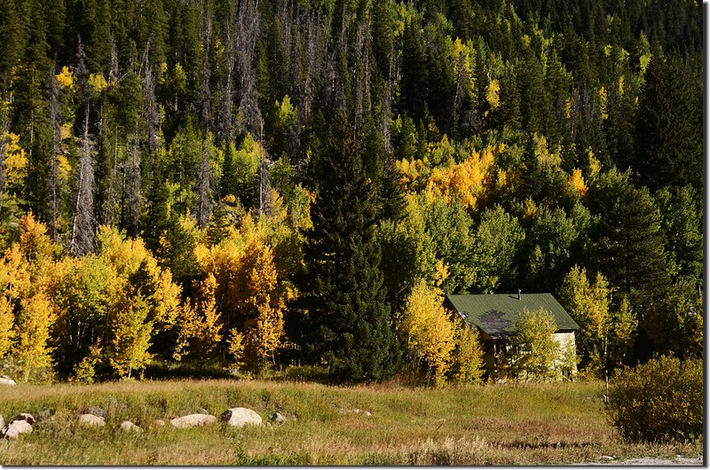 Fall colors at E. Portal trailhead, Colorado (6)