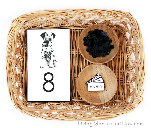 Basket with Dalmatian Cards and Counters Plus Odd and Even Labels