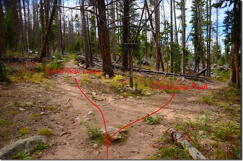 The junction of Gore Range Trail & Willow Lake Trail