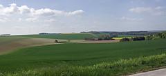 Sergines (Yonne)