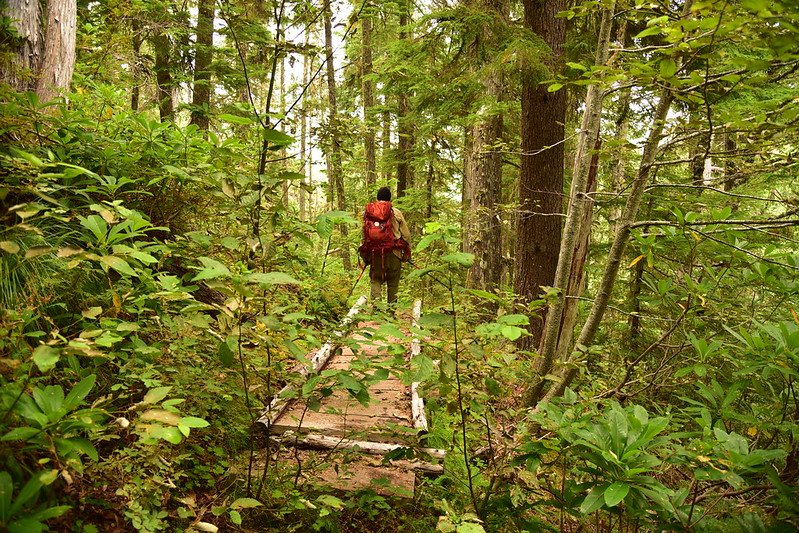 Elk Lake Creek Trail