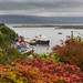 View over Tobermory Harbour