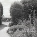 Summer In A Garden - Bournemouth
