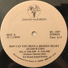 DAVID HUDSON:DIFFERENT LADY(LABEL SIDE-B)