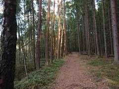 Til Slitu - Rudsmosen - Askim - Østfold - Norway