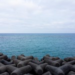 Tetrapods along the ocean