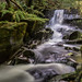 Healey Dell Waterfall