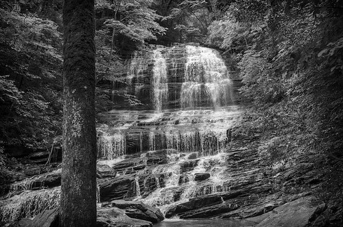 saluda north carolina the south landscape outdoor hike hiking woods forest trees waterfall pearson falls bw black white monotone