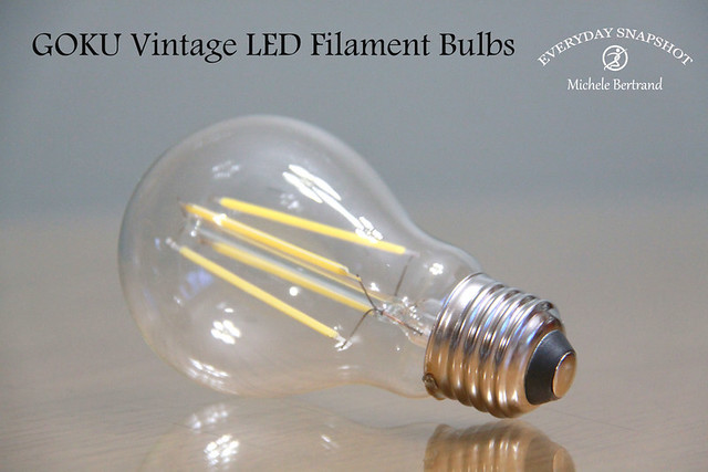 GOKU Vintage LED Filament Bulbs – Review
