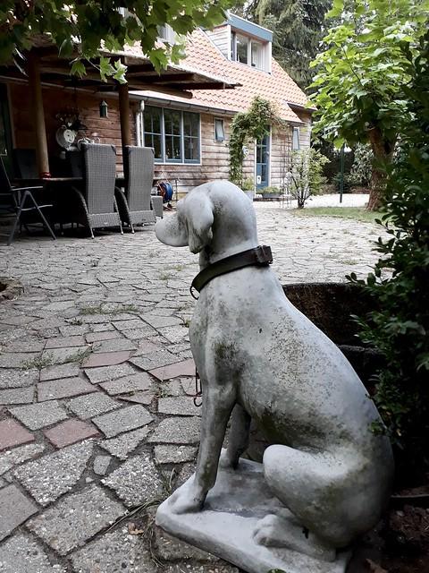 Stenen hond