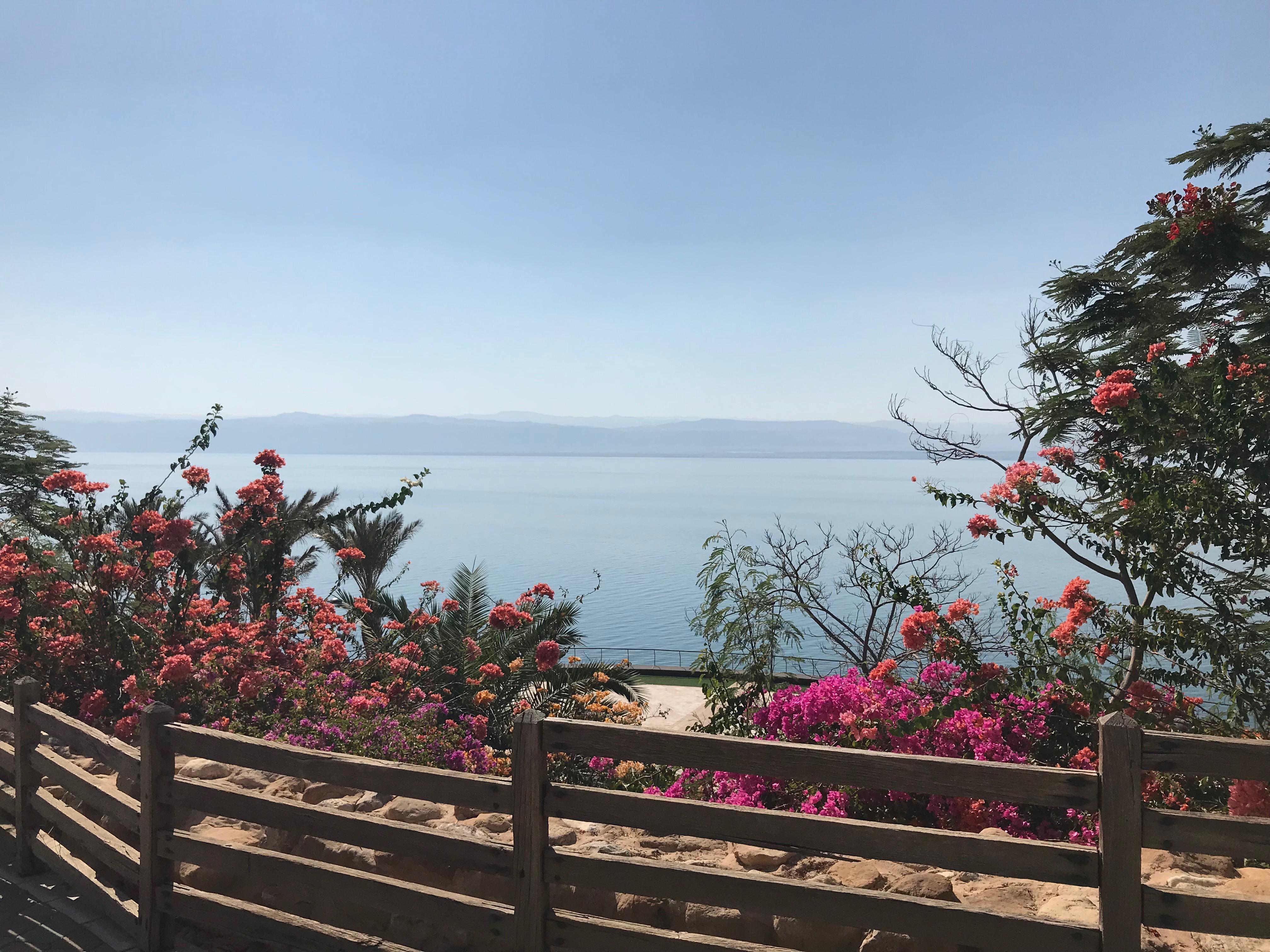 dead sea - sea view