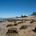 Praia da Galé -  Plataforma de Abrasão A_-16