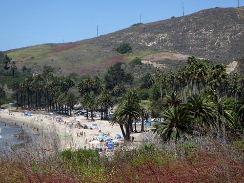 Refugio State Beach (0095)