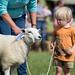 Young Persons Lamb Handling