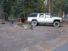 Campsite D15