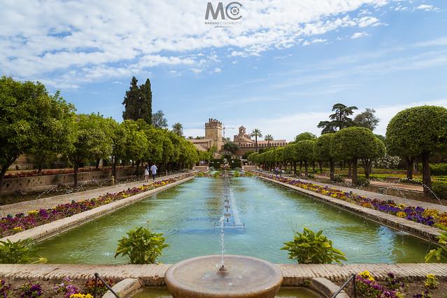 The gardens of the Alcázar