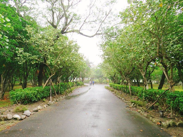 頭城濱海森林公園 4