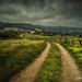 Northern paths... by Giacomo della Sera