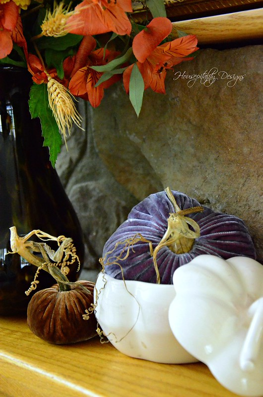 Velvet Pumpkins-Housepitality Designs
