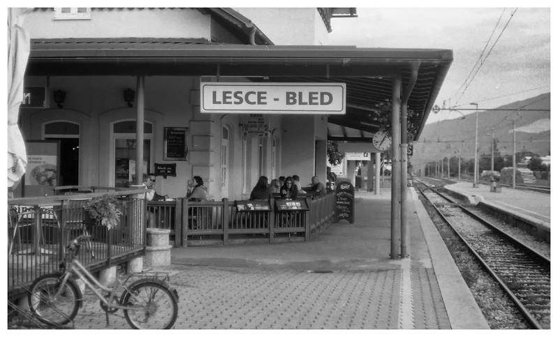 lesce bled