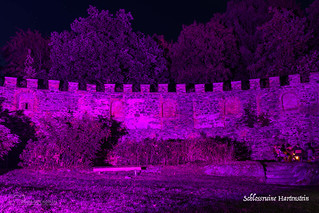 DE - Schlossruine Hartenstein