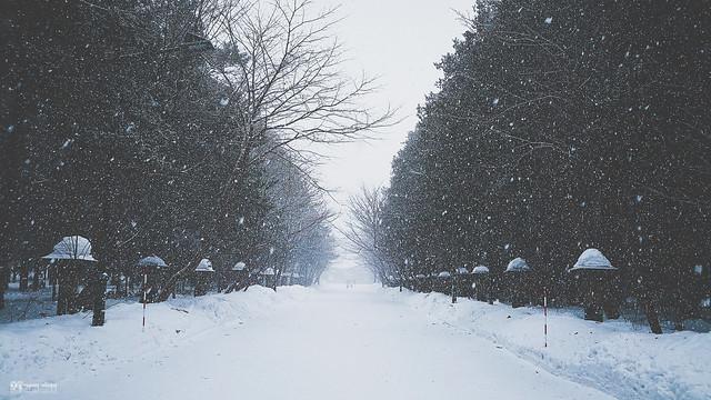 她說旅途若是卷底片|北國之冬 | 18