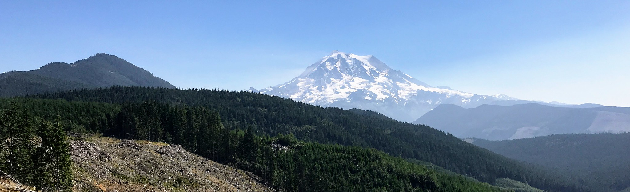 Mt Rainier from the road to Mowich Lake