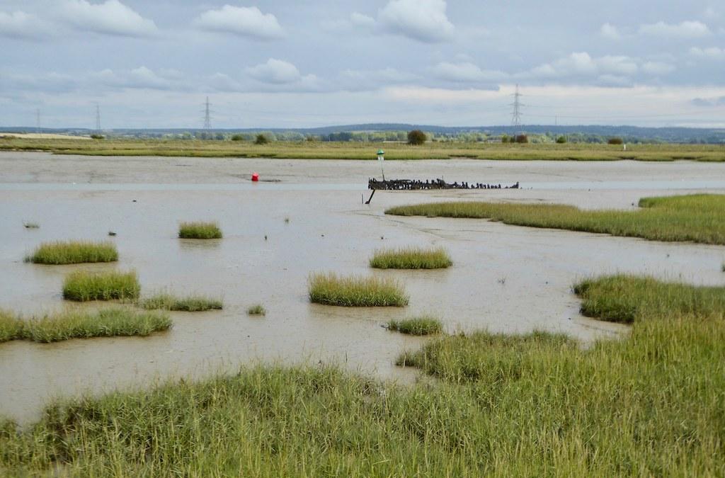 Marshes near Faversham Teynham to Faversham walk