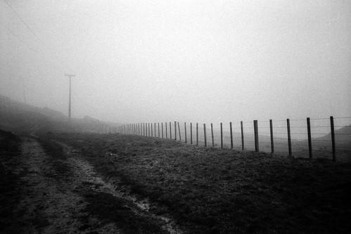 Misty ranch