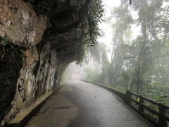 Estrada das Paineiras
