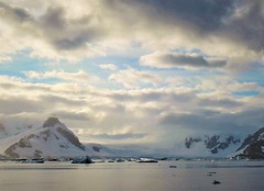 Morning on the Antarctic Peninsula.
