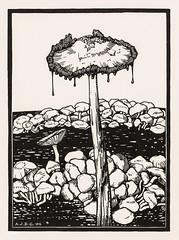 Dripping mushroom (1916) by Julie de Graag (1877-1924). Original from the Rijks Museum. Digitally enhanced by rawpixel.