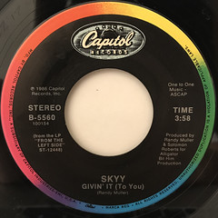SKYY:GIVIN' IT (TO YOU)(LABEL SIDE-A)