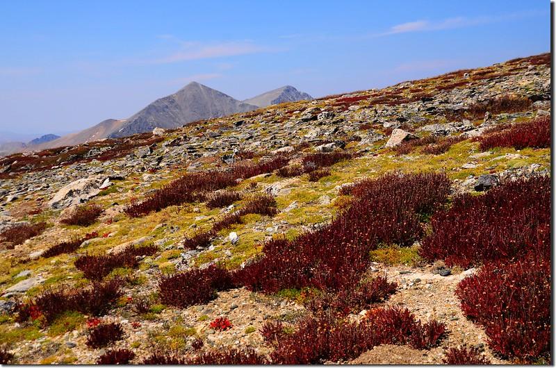 Grays & Torreys Peak from near Argentine summit