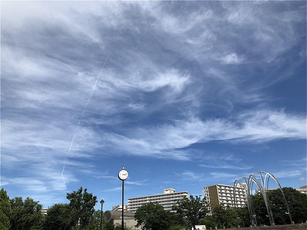 20180708_光が丘 (3)