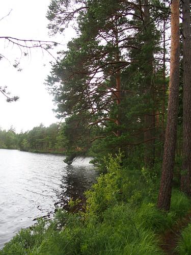SÖ E35 Nävsjön