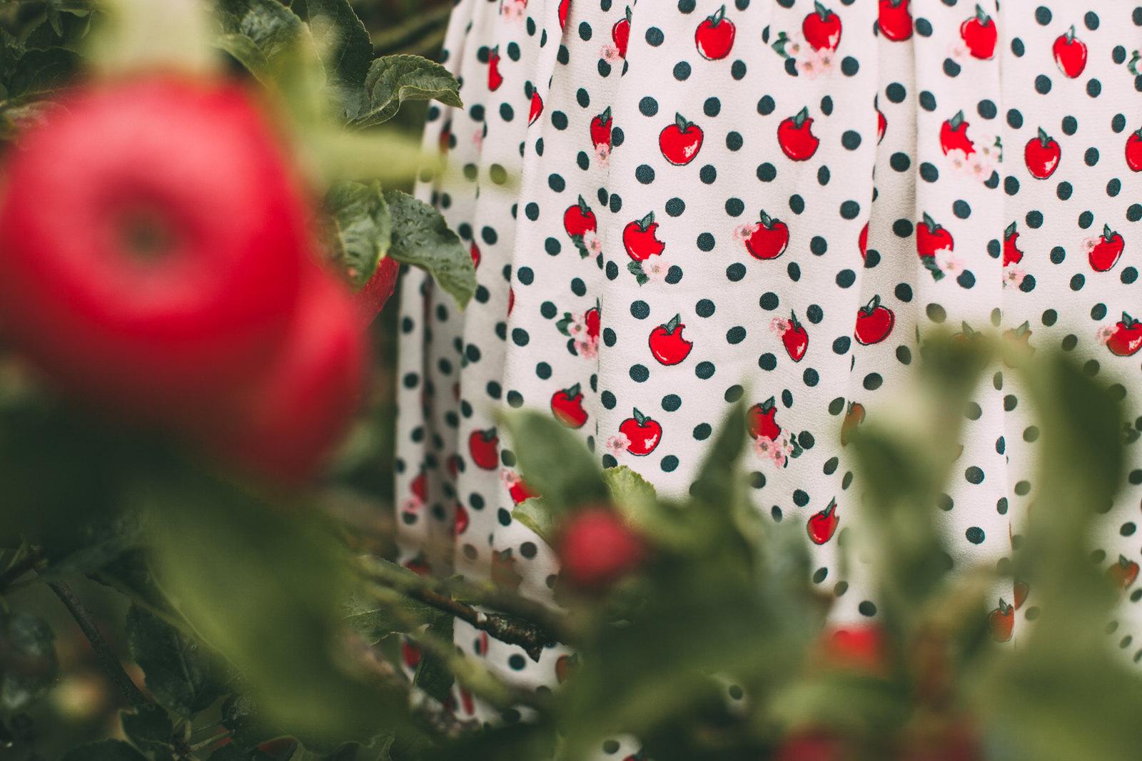 cath kidston apples-19
