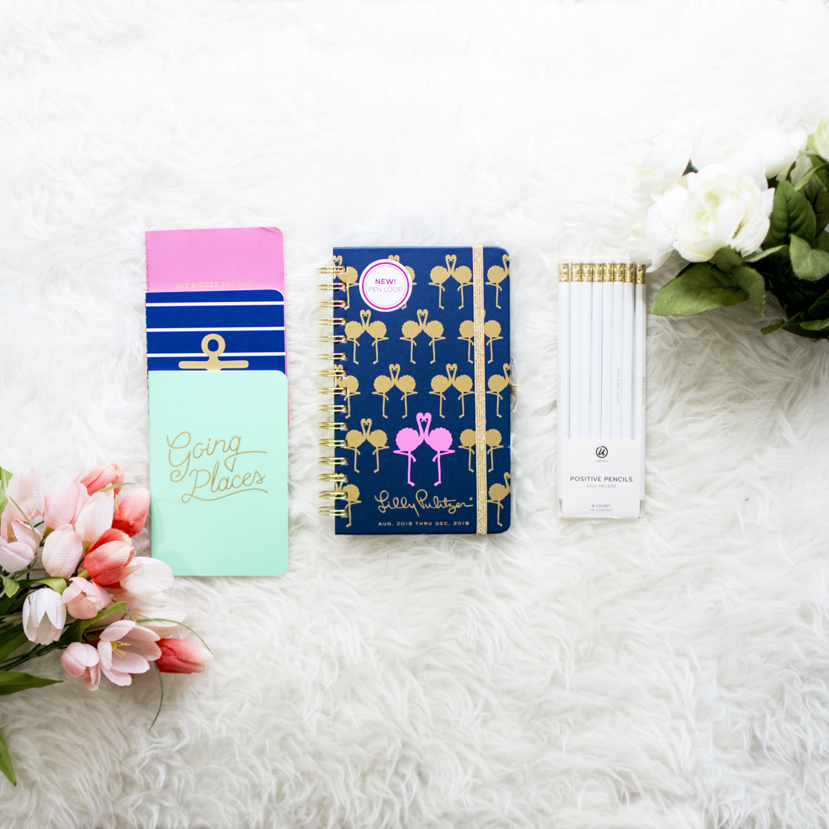 A Thing of Beauty Lilly Pulitzer Agenda Giveaway