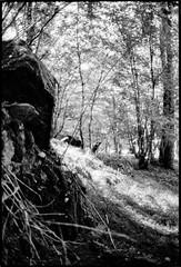 Un peu plus loin... - Photo of Sardy-lès-Épiry