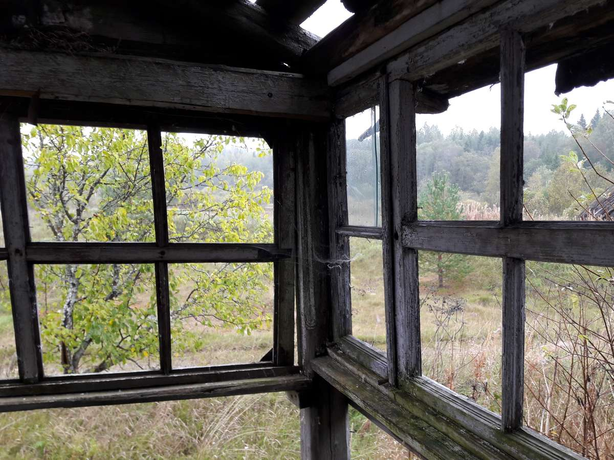 Заброшенные деревни Новгородской области: Тидворье