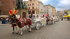 Krakow and around