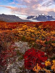 Colors at Knik Glacier1