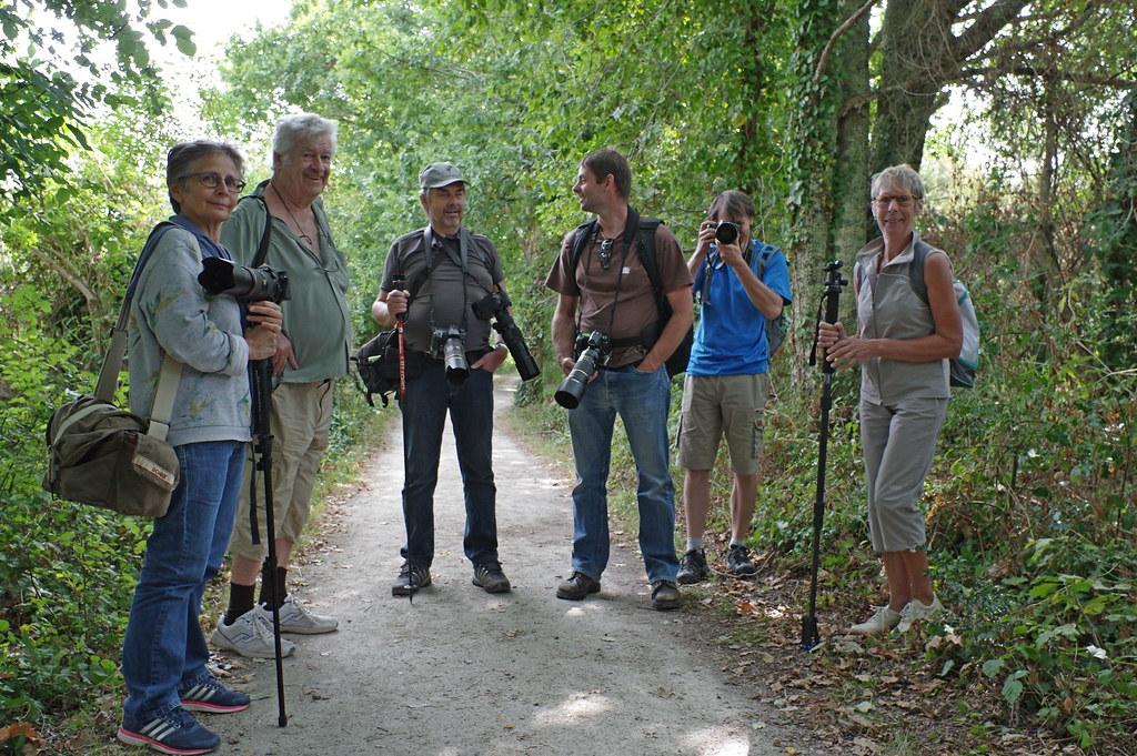 Sortie à la réserve ornithologique du Teich - 24 août 2018 - Page 2 44262075232_254c6185ac_b