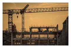 ENS Paris-Saclay - chantier au couchant