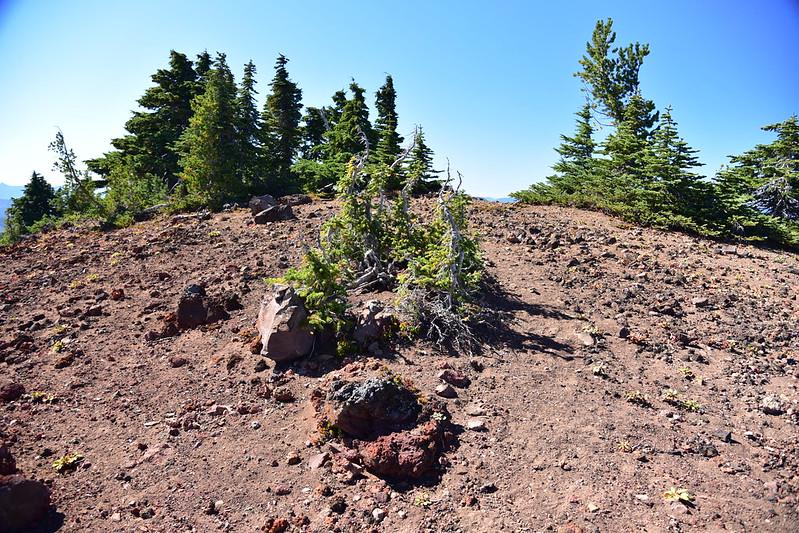 South Cinder Peak