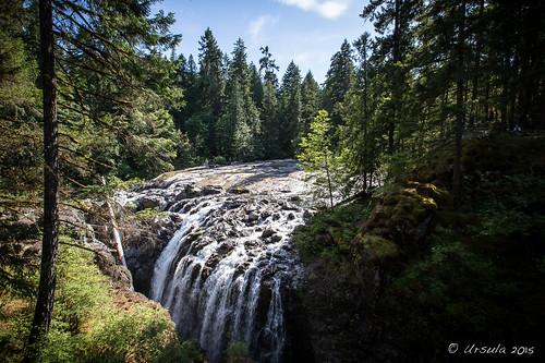 bc canada englishmanriver englishmanriverfallsprovincialpark errington falls pnw pacificnorthwest parksville provincialpark