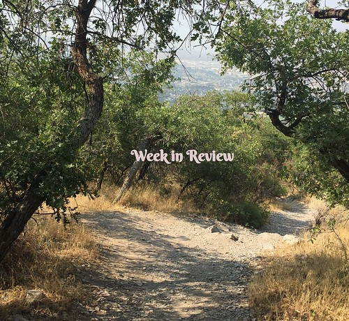 Aug_20_week_in_review
